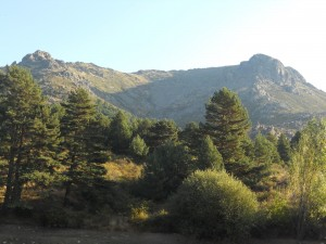 Barranca valley